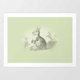 Bunny Rabbit {soft sage green} Art Print