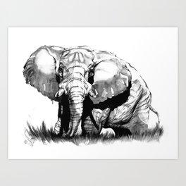 African Elephant (Black & White) Art Print