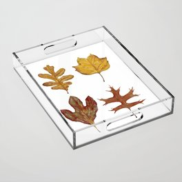 Fall Leaves Painting Acrylic Tray