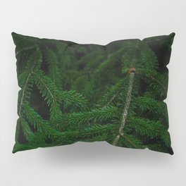 Pine Green Leaves In A Dark Surrounding Pillow Sham