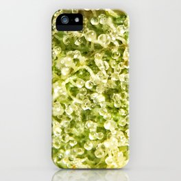 Top Shelf White Fire OG Wifi Strain Close Up Buds Trichome Blanket iPhone Case