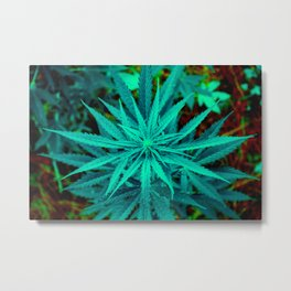 Twisted Frosty Weed Metal Print