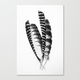 Monochrome Feather Collection Canvas Print