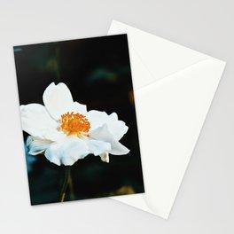 November Rose Stationery Cards