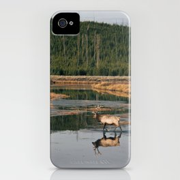 Bull Elk Crossing a River in Yellowstone iPhone Case