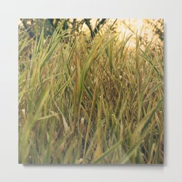 Lost in the Grasses (camo) Metal Print