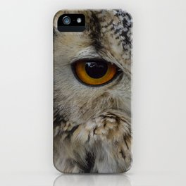 Eurasian eagle-owl, wild bird iPhone Case