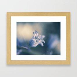 Jacinthe des bois Framed Art Print