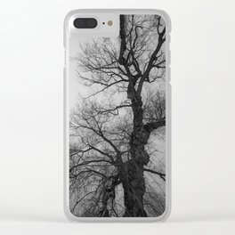 Nature Photography Weeping Willow   Lungs of the Earth   Black and White Clear iPhone Case