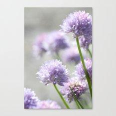 I dreamt of fragrant gardens Canvas Print