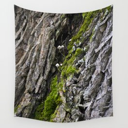 Tree trunk and mushrooms Wall Tapestry