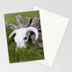 Buffalo skull Stationery Cards