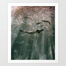 Deep Secret Art Print