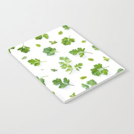 Herbs on White - Landscape Notebook