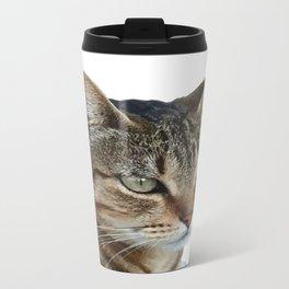 Stunning Tabby Cat Close Up Portrait Isolated Travel Mug