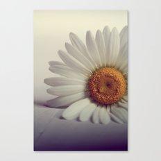 Daisy Flower Canvas Print