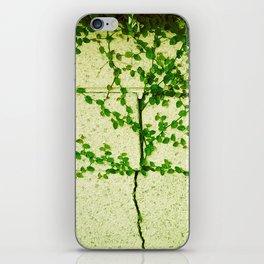 Ivy Wall iPhone Skin