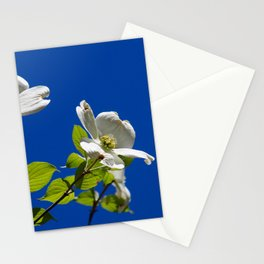 Blue Skies and Dogwood Trees in Bloom!  Stationery Cards