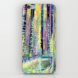 Redwoods Road Trip iPhone Skin