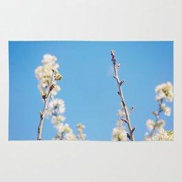 Blue Blossoms Rug