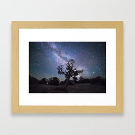 Astronomer's Tree Framed Art Print