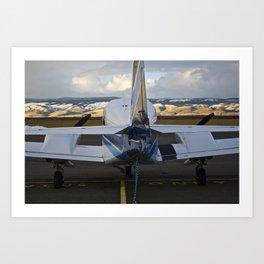 Art of Flight  Art Print