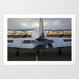 Art of Flight  Art Print