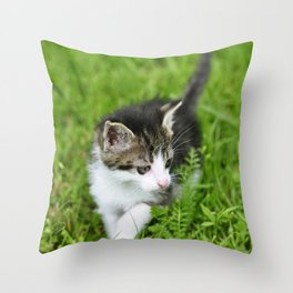 Kitten in the grass Throw Pillow