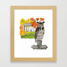 Great Horned Owl in Graceland Cemetery Framed Art Print