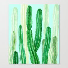 cactus in the nature Canvas Print