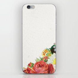 Penelope iPhone Skin