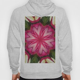 Hearts (from a lovely pink Anthurium flower) Hoody