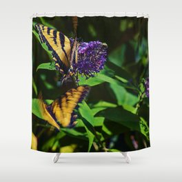 Swallowtails in the Bush Shower Curtain