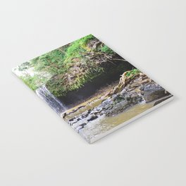 Maui Revealations Notebook