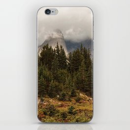 Moody Morning in the Wyoming Wilderness iPhone Skin