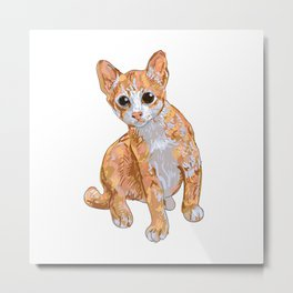 A little cute cat,curious and playful  Metal Print