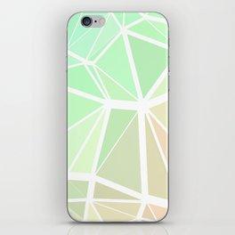 Rainbow Triangles iPhone Skin