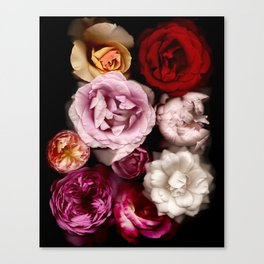 Red, White, Yellow, and Pink Roses Canvas Print