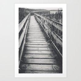 Marsh Path 3 Art Print