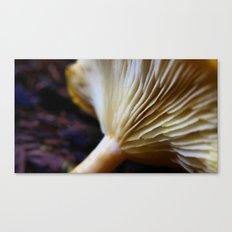 Mushroom Macro Canvas Print