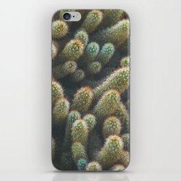 Botanical Gardens - Cactus #596 iPhone Skin