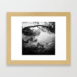 Hollywood Hills landscape Framed Art Print