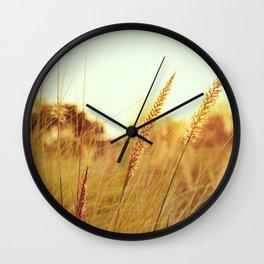 Sunlit Fountain Grass Photograph Wall Clock