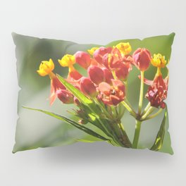 Little Spring Blooms Pillow Sham