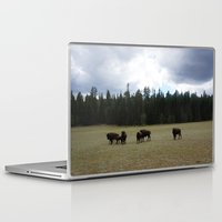 buffalo Laptop & iPad Skins featuring Buffalo  by Taylor Palmer