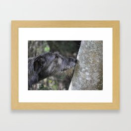 Irish Wolfound Framed Art Print