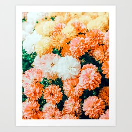 Garden Song #photography #nature Art Print