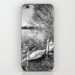Swan Lake Art iPhone Skin