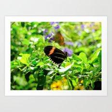 Butterfly - 3 Art Print