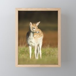 Portrait of a Cute Fallow deer fawn Framed Mini Art Print